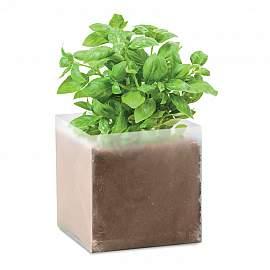Compost cu seminte BASIL