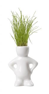 figurina cu iarba, Dude
